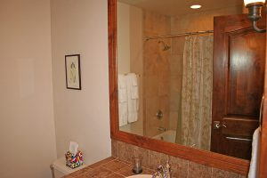 Guest Bath with Shower/Tub Combo