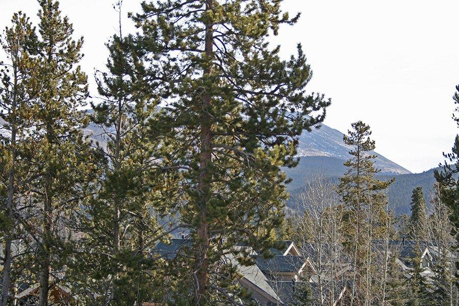 BlueSky 511 Condo: View of Baldy Mountain