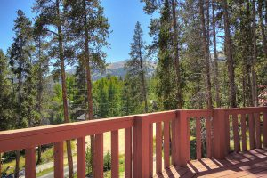 Exterior Deck View, Forested Setting