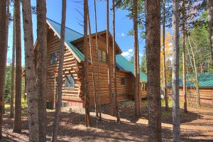 Exterior Back with Peaceful Location in the Pines